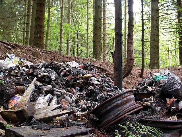 Ustawa śmieciowa na śmietnik. W lasach zalegają odpady