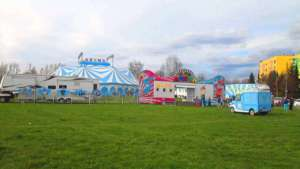 Zakazy dla cyrków są pozytywnym trendem wśród miejskich włodarzy / wikipedia commons