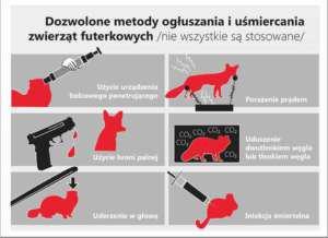 """Jak umierają - grafika ilustrująca raport """"Vivy!"""" na temat przemysłu futrzarskiego w Polsce"""