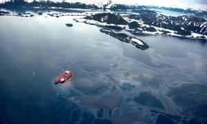 facebook.com/Save the Arctic
