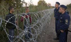 Granica serbsko-węgierska ogrodzona płotem z drutu kolczastego / media.philly.com