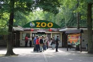 zoo.poznan.pl