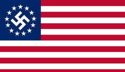 Flaga Nowej Amerykańskiej Partii Nazistowskiej / Źródło: wikimedia