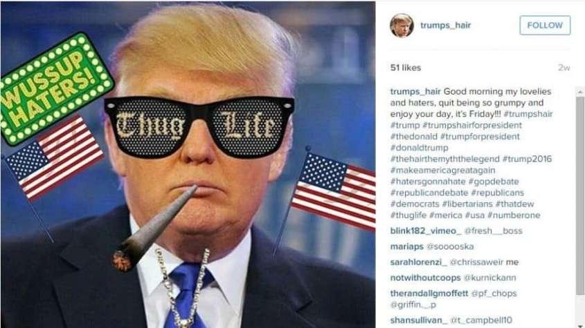 Satyryczny wizerunek Donalda Trumpa, źródło: Instagram / trumpa_hair