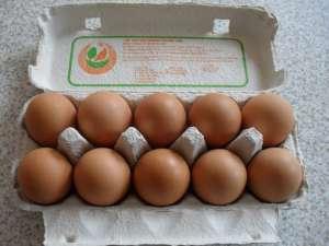 Przed świętami organizacje walczące o prawa zwierząt przygotowuja eventy uświadamiające przy kupnie jajek, fot. pixabay.com/ gsconsultit