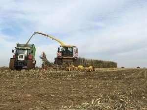 pixabay.com/pl/traktor-żniwa-kukurydza-sabinevanerp