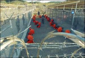 Więźniowie w Guantanamo/wikimedia commons