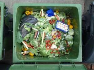 W USA marnuje się ok. połowy produkowanej żywności/wikimedia commons