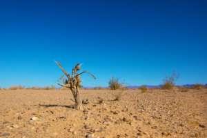 Zmiany klimatyczne mogą doprowadzić do katastrofy w Zatoce Perskiej / publicdomainpictures.net