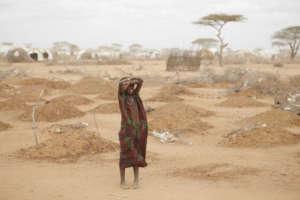 Nigerii grozi największy głód od dziesięcioleci/wikimedia commons