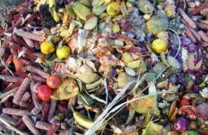Produkty spożywcze na śmietniku - włoskie władze podjęły walkę z tym zjawiskiem / /foodfighters2013.files.wordpress.com